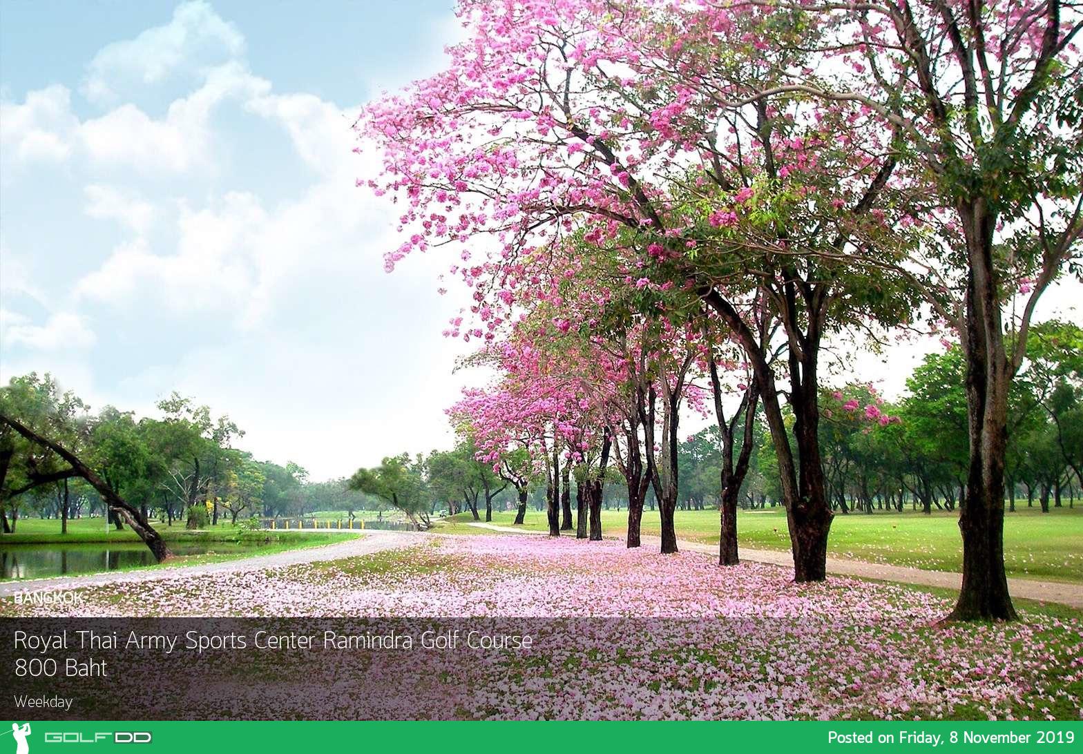 Royal Thai Army Sports Center Ramindra Golf Course ออกรอบชิวๆกลางเมืองกรุง เดินทางง่าย สะดวกสบาย