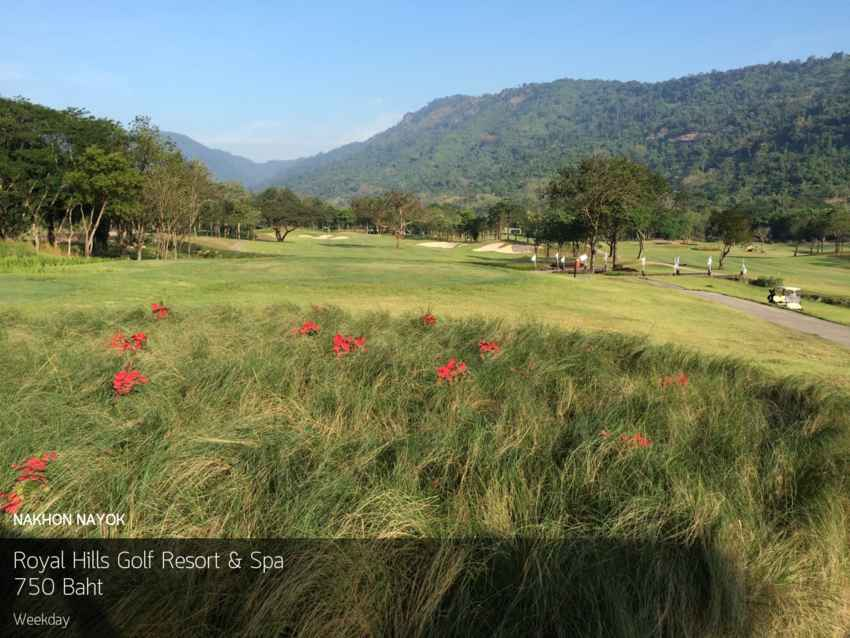 ออกรอบยั่วๆ ท่ามกลางธรรมชาติที่ Royal Hills Golf Resort & Spa นครนายก พร้อมจองผ่าน Golfdd จ่ายเงินได้ที่สนามกอล์ฟ