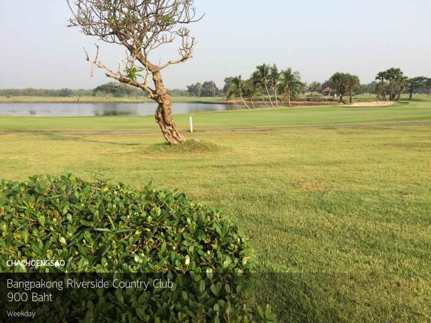 ออกรอบสบาย กินบรรยากาศที่ Bangpakong Riverside Country Club ฉะเชิงเทรา พร้อม Booking Teetime กับ golfdd จ่ายเงินที่สนามได้เลย
